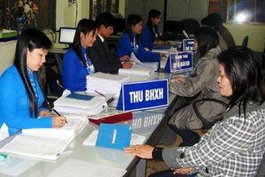 BHXH TP Hà Nội: Quyết liệt thực hiện các giải pháp giảm nợ BHXH về dưới 3%