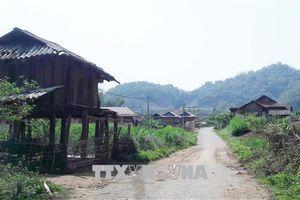 Cuộc sống người dân sau tái định cư các dự án thủy điện ở Quảng Nam còn khó khăn