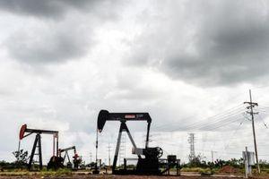 Venezuela sẽ bán toàn bộ sản lượng dầu thô năm 2019