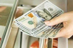 Một người dân ở Nghệ An bị phạt 40 triệu vì mua bán 100 USD