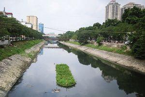Giấc mơ phát triển du lịch trên sông Tô Lịch?!