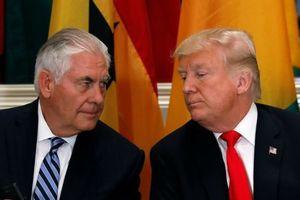 TT Trump chỉ trích cựu ngoại trưởng là 'câm như đá' và 'lười như quỷ'