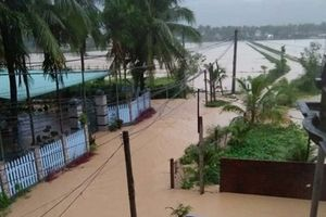 Sau 1 đêm mưa, hàng ngàn nhà dân tại huyện Hoài Ân bị ngập nước