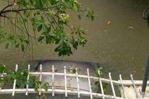 Đà Nẵng mưa lớn, hàng loạt xế xịn ngập trong nước