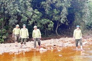 Gác rừng giữa Trường Sơn
