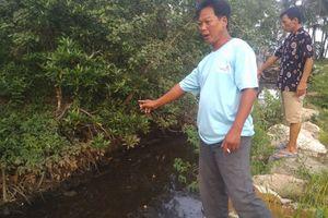 Lãnh đạo huyện Phú Quốc lên tiếng việc dân 'tố' nhà máy rác xả nước thải ra biển