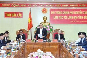 Thủ tướng Nguyễn Xuân Phúc:Không để sa mạc hóa vùng đất chiến lược Đắk Lắk