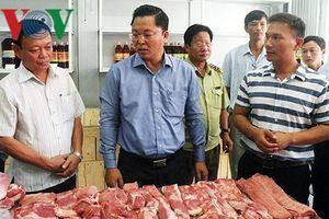 Mô hình hợp tác xã chăn nuôi tập trung cho hiệu quả kinh tế cao