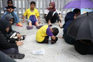 Cổ động viên Malaysia ngất xỉu khi xếp hàng mua vé AFF Cup