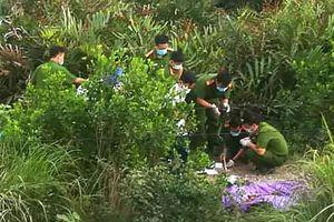 Thi thể người đang ông đang phân hủy trong bụi rậm ở Sài Gòn