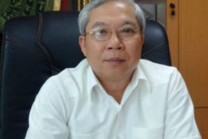 Bộ GTVT có chậm giải quyết đơn tố cáo Chủ tịch VEC?