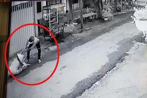 Bị giật dây chuyền, người phụ nữ 45 tuổi đuổi theo quật ngã tên cướp