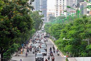 Hà Nội: Trong 3 năm chi hết 256 tỷ đồng trồng cây xanh