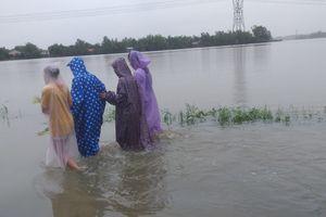 Đà Nẵng từ trung tâm thành phố, ngập lan ra đến huyện vùng ven