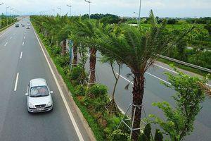 Hà Nội chi hơn 250 tỷ đồng trồng 1 triệu cây xanh
