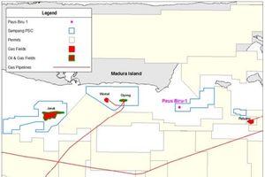 Ophir Energy tìm thấy phát hiện khí tại Indonesia