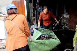 Sau cháy lớn, tiểu thương chợ Vinh mót của trong tan hoang, mất trắng hàng tỉ đồng