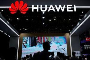Hai lý do khiến Mỹ giục đồng minh phương Tây cấm cửa Huawei