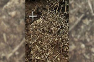 Vi khuẩn liên quan đến 'cái chết đen' được tìm thấy trong mộ 5.000 năm tuổi