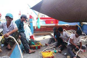 Nghệ An: 'Tìm mỏi mắt' kiếm lao động... đi biển