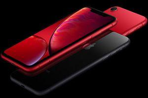 Ế ẩm! Apple giảm giá iPhone XR chỉ còn 10 triệu đồng để kích cầu doanh số