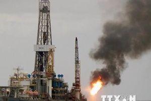 Giá dầu châu Á tăng nhẹ khi mở phiên 10/12