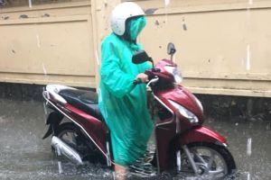 Ngập sâu tái diễn, Đà Nẵng hoãn họp Hội đồng nhân dân