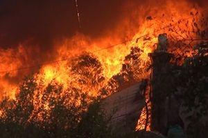 500m2 của 3 kho phế liệu bị cháy rụi
