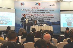 Xây dựng kế hoạch hành động quốc gia về quản lý rác thải nhựa đại dương