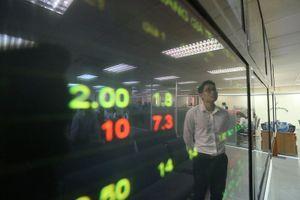Kênh đầu tư thông minh giữa hai làn tiết kiệm và chứng khoán