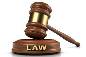 Chủ tịch nước công bố 9 luật mới