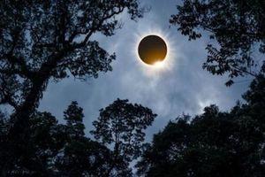 Các nhà khoa học sẽ 'che Mặt trời' từ mùa Xuân 2019 để cứu lấy Trái đất