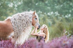Mê mẩn 'nàng' ngựa đẹp tuyệt mỹ, mệnh danh 'công chúa tóc mây'