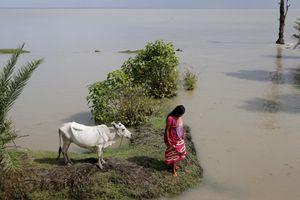 Nước biển dâng 'liếm' mất dần một hòn đảo Ấn Độ