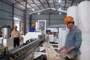 Hiệp định VPA/FLEGT: Chắp cánh cho gỗ Việt xuất khẩu trực tiếp vào thị trường EU