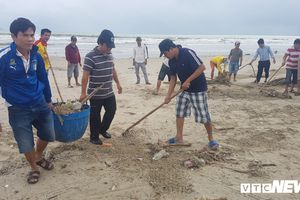 Sau mưa ngập lịch sử, Chủ tịch Đà Nẵng chỉ đạo gấp rút xử lý môi trường