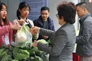 Mua thực phẩm sạch trên phố đi bộ Hà Nội: Vừa sạch lại xanh