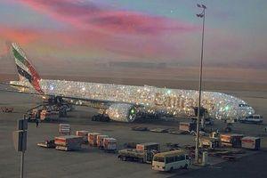 Dân tình xôn xao vì chiếc máy bay dát kín kim cương ở Dubai