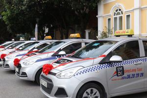 Liên minh taxi, xóa manh mún và mối nguy từ việc quá nhiều ông chủ