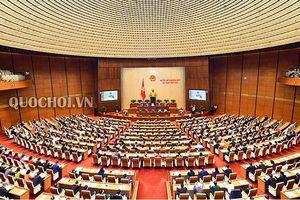 Phân công các Bộ soạn thảo quy định chi tiết thi hành 9 luật trong năm 2019