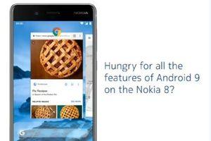 Nokia 8 hiện đang được cập nhật Android 9 Pie beta