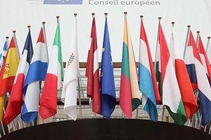 EU bảo vệ thương mại với Iran bằng cơ chế mới