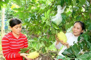Hậu Giang nỗ lực xây dựng chuỗi giá trị nông sản dựa trên nền tảng logistics