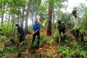Bảo vệ rừng vùng giáp ranh