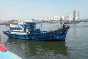 Tàu cá Đà Nẵng cứu tàu hàng gặp nạn trên biển Quảng Trị