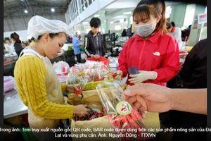Lâm Đồng: Đẩy mạnh dán tem truy xuất nguồn gốc sản xuất nông sản