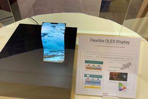 Sharp trình diễn màn hình OLED uốn dẻo, TV 8K độc đáo tại Việt Nam