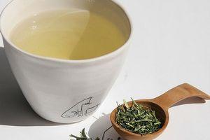 Những loại trà tốt cho sức khỏe trong mùa đông