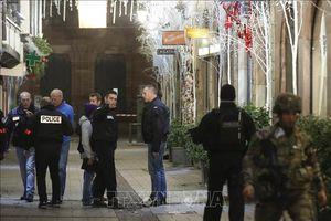 Chính phủ Pháp kêu gọi ngừng biểu tình 'Áo vàng' sau vụ tấn công ở Strasbourg