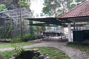 Văn phòng cho thuê mọc lên giữa đất công viên